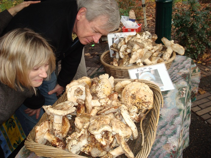 Mom and Dad marvel over abundant but expensive matsutake mushrooms at the Saturday Farmers' Market in Portland.