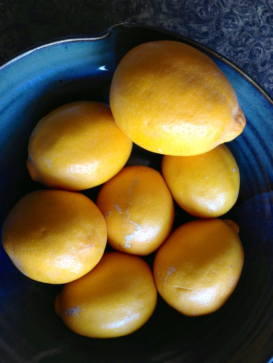 Nothing like ripe Meyer lemons from California to brighten a grey, cold January day in Maine.